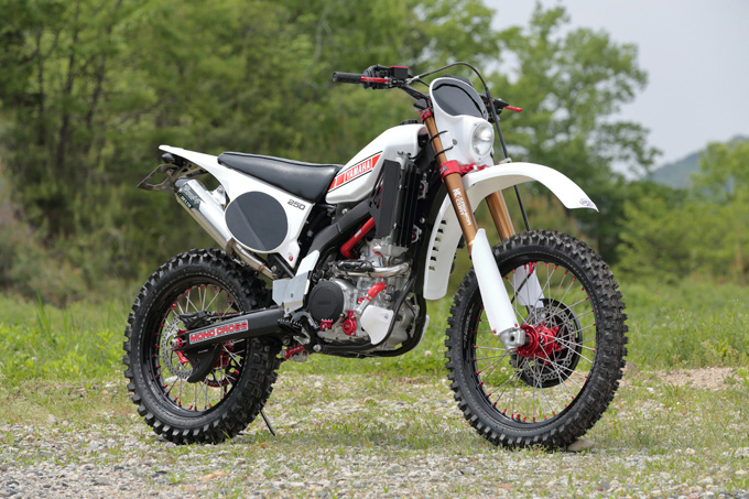 DIRTFREAK WR250R RETRO(YAMAHA WR250R RETRO)のカスタム画像